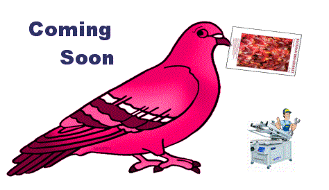 Paper Broadsheet out soon – 6th Oct 2015