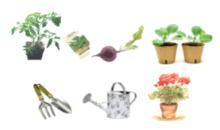 Gardening Club Plant Sale – 15th May 2016