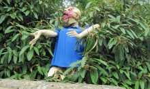 Scary Tadmarton – until 16th July 2016