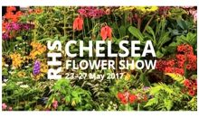 Gardening Club: Chelsea Highlights – 23rd Oct 2017