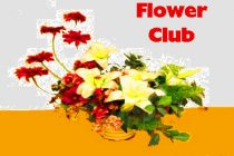 Bloxham Flower Club – 11th Nov 2017