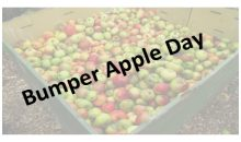 Bumper Apple Day 2017