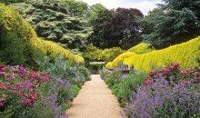 Bloxham Gardening Club – 16th July 2018